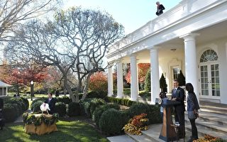 品味美國感恩節 閤家歡聚感恩的日子