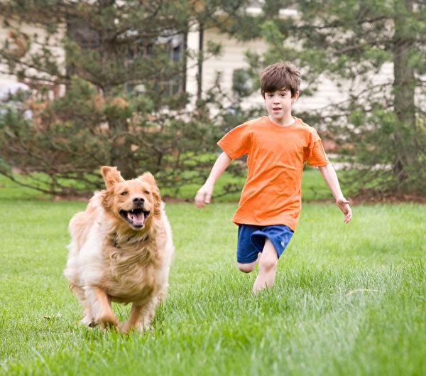 新的研究发现,狗带进家里的灰尘可能会帮助婴儿免疫系统抵御疾病,避免过敏性反应。(sonya etchison - Fotolia)