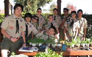 两华裔少年 有望晋级鹰级童军