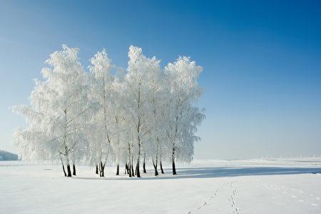 冬至是陰陽轉換的時刻,歷代養生家都很重視這個節氣的養生。(Szasz-Fabian Jozsef / Iosif Szasz-Fabian - Fotolia)