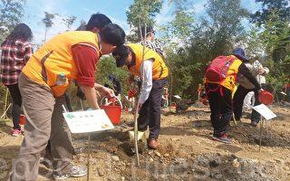 南投县105年植树节活动中,民众及来宾在竹山文化园区种植光腊树。(黄淑贞/大纪元)