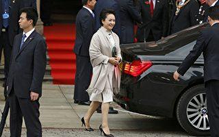 彭麗媛多次隨習近平出訪。資料圖片(AFP)