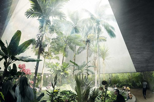 """""""伊安波特国家温室保护园""""室内设计图案。(澳洲国家植物园提供)"""