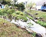 台中市北屯區新都生態公園為台中首座以生態工法設計的公園,號稱六星級,假日遊客上萬。(台中市政府提供)