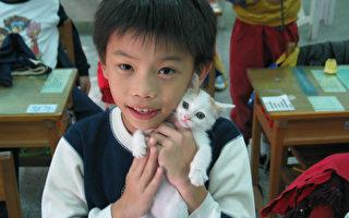 """不少学校选择在校内养校狗,驻守校舍也陪伴学生。不 过台北市溪山国小养的却是喵星人""""嘟嘟"""",它曾差点 一度溺死在校内的马桶里,被学生救起后,就此成为超 疗愈的校猫。 (溪山国小提供/中央社)"""