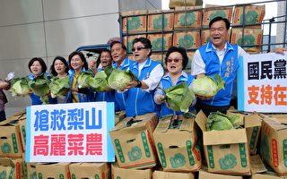國民黨團抨擊市府,高麗菜價低迷,菜農不符成本,只能自力救濟。(黃玉燕/大紀元)