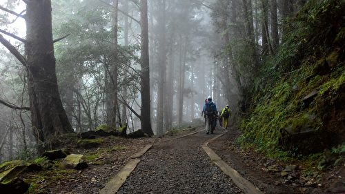 山中雾气渐渐笼罩。(曾晏均/大纪元)