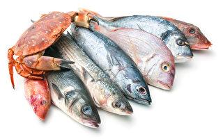 17种不健康鱼虾蟹 为何不要吃 + 吃什么鱼好