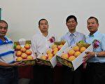 三星上将梨23日举办上市发表会。(三星乡公所提供)