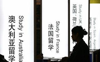 图为一个中国学生在查询各种出国项目。(STR/AFP/Getty Images)