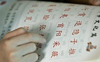 自2010年起,維州公立學校中,尤其是在小學裡,學中文的人數激增。 (LIU JIN/Getty Images)