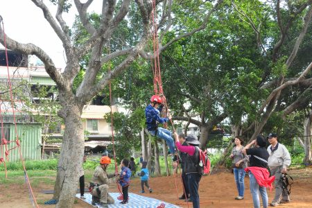 庄园周年庆举办攀树活动 。(赖月贵/大纪元)
