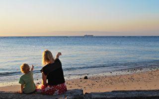 青松絮语:海洋馆的对话
