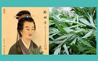 说起中国的四大女医,每个人都是一部令人惊叹的传奇,其中晋代的鲍姑,可是中国第一位女灸学家呢!(大纪元合成)