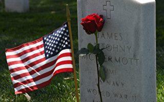 """美国人纪念""""国殇日"""":自由来之不易"""
