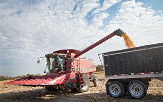 美农业部长:川普保护农民 免受中共报复