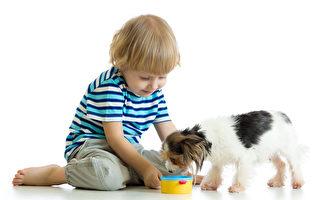 為了小狗健康 千萬別餵牠們吃這些東西