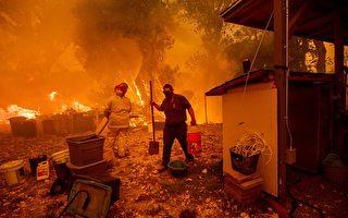 北加州野火蔓延 第七人遇難