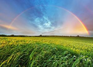青松絮语:头顶的彩虹 脚下的水坑