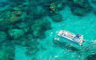 西澳老鼠岛海底探索  揭开珊瑚神秘面纱