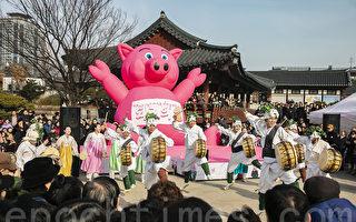 组图:首尔民众体验传统习俗 喜迎猪年