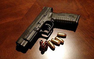 伊州争取立法 要求购枪者提交指纹