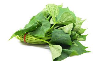 一些食物能帮助你提升肺功能,对预防肺癌有好处。图为富含维生素A的地瓜叶。(shutterstock)