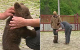 小熊走投无路来投靠 波士尼亚村民当奶妈