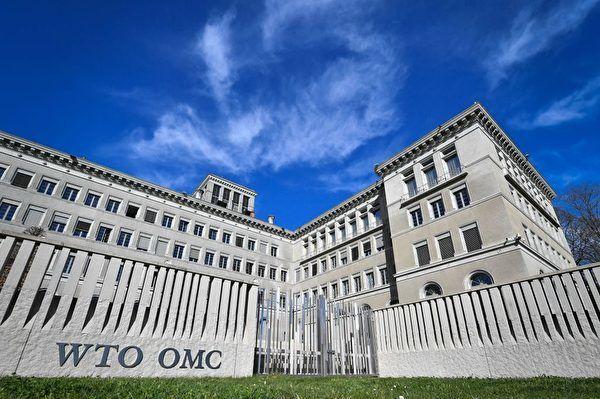 杨威:莱特西泽再度暗示可能抛弃WTO