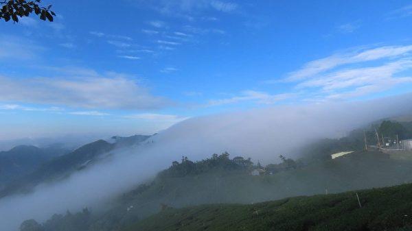 【視頻】罕見 阿里山雲海雲瀑大爆發遊客驚艷