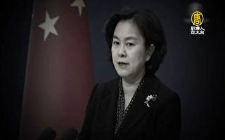 借美明州事件挑釁 華春瑩被網民集體打臉