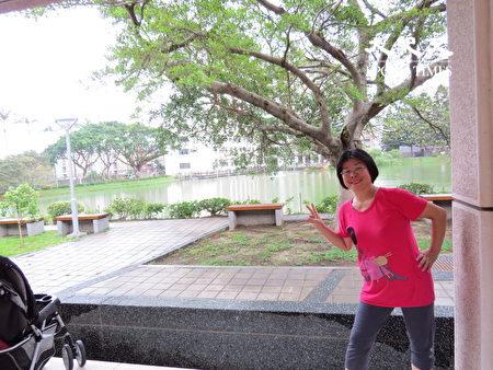 中央大學校景優美,素有「桃園市的桃花源,中壢區的大公園」之稱。