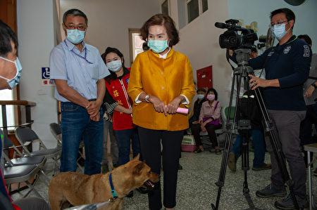 林姿妙县长视察流浪动物免费绝育活动执行情形。