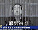 王友群:內蒙古十大億元貪官排行榜