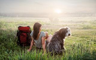 想带狗狗去健行 快乐旅程10项攻略