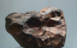 澳男挖到46亿年陨石 宁给教育机构而不发财