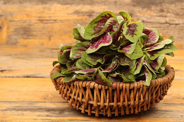 紅莧菜是含鐵蔬菜冠軍 配2類食物補鐵效果更好