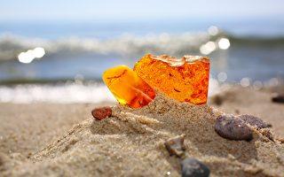 來自波羅的海琥珀或成對抗抗藥性細菌新藥