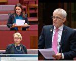 澳多位参议员吁外交部启动中澳关系调查